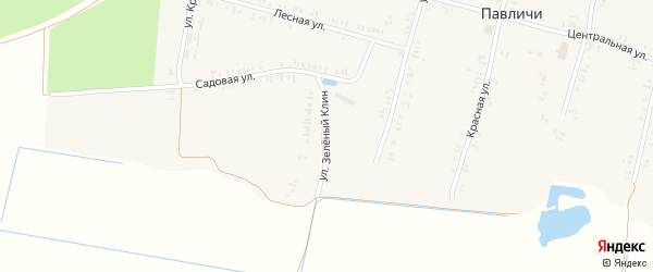 Улица Зеленый Клин на карте села Павличей с номерами домов