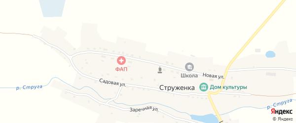 Новая улица на карте деревни Струженки с номерами домов