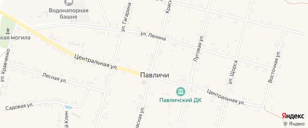 Красная улица на карте села Павличей с номерами домов