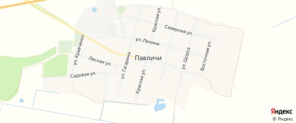 Карта села Павличей в Брянской области с улицами и номерами домов