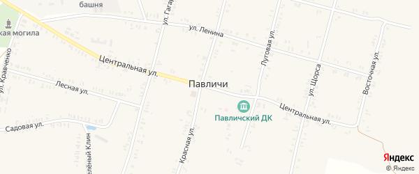 Центральная улица на карте села Павличей с номерами домов