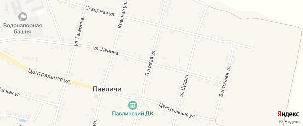 Луговая улица на карте села Павличей с номерами домов