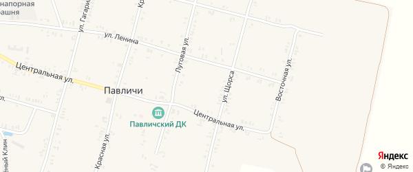 Северная улица на карте села Павличей с номерами домов