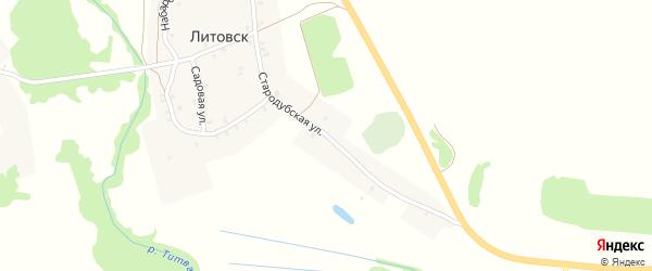Стародубская улица на карте села Литовска с номерами домов