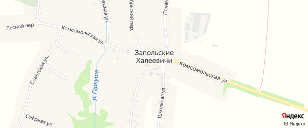 Первомайская улица на карте села Запольские Халеевичи с номерами домов