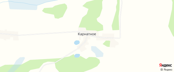 Карта поселка Карнатного в Брянской области с улицами и номерами домов