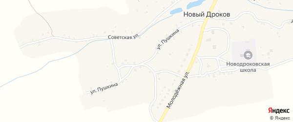 Улица Пушкина на карте села Нового Дрокова с номерами домов