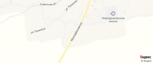 Молодежная улица на карте села Нового Дрокова с номерами домов