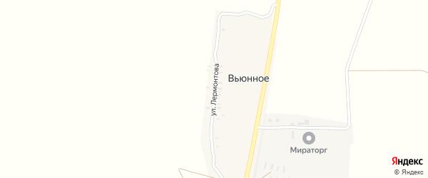 Улица Лермонтова на карте поселка Вьюнного с номерами домов