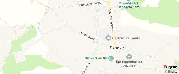 Березовая улица на карте села Ляличей с номерами домов