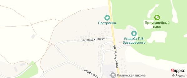 Молодежная улица на карте села Ляличей с номерами домов