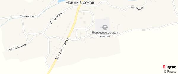 Молодежный переулок на карте села Нового Дрокова с номерами домов