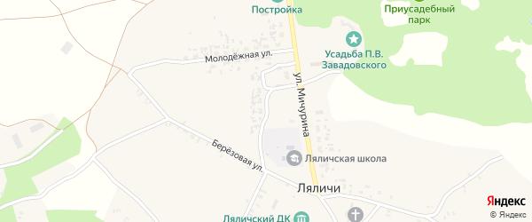 Советский переулок на карте села Ляличей с номерами домов