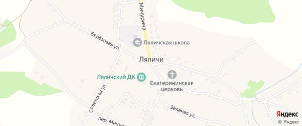 Садовый переулок на карте села Ляличей с номерами домов