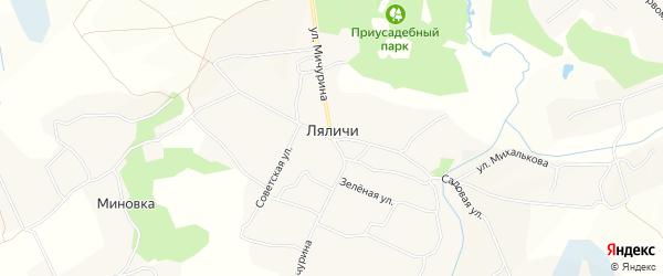 Карта села Ляличей в Брянской области с улицами и номерами домов