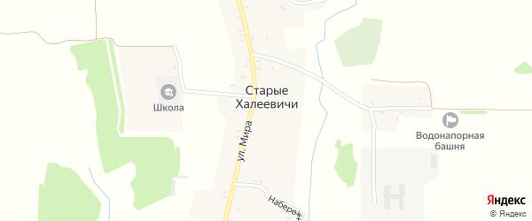 Улица Мира на карте села Старые Халеевичи с номерами домов