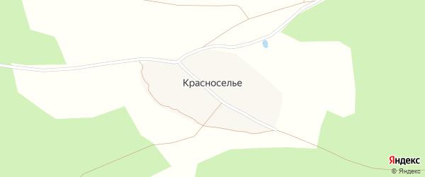 Линейная улица на карте поселка Красноселья с номерами домов
