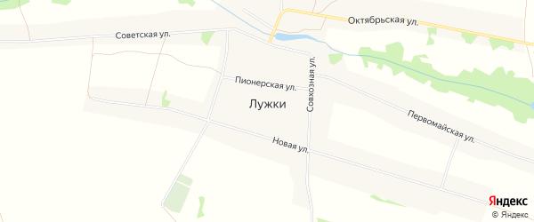 Карта села Лужки в Брянской области с улицами и номерами домов