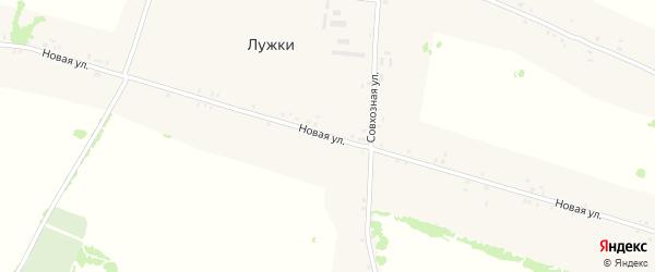 Новая улица на карте села Лужки с номерами домов