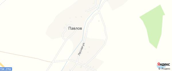 Лесная улица на карте поселка Павлова с номерами домов