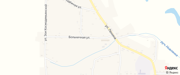 Больничная улица на карте Нивного села с номерами домов
