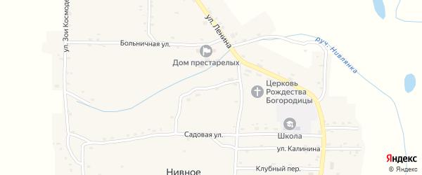 Железенский переулок на карте Нивного села с номерами домов