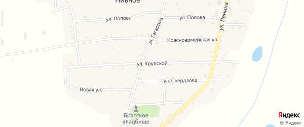 Улица Крупской на карте Нивного села с номерами домов