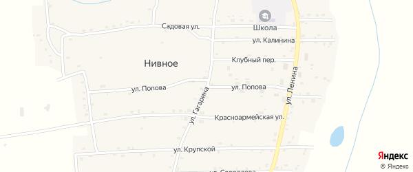Улица Попова на карте Нивного села с номерами домов