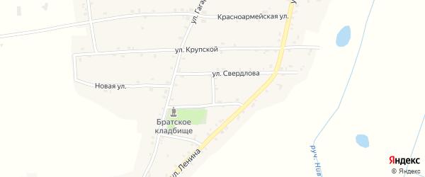 Переулок Пушкина на карте Нивного села с номерами домов