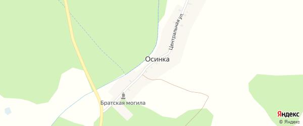 Центральная улица на карте деревни Осинки с номерами домов