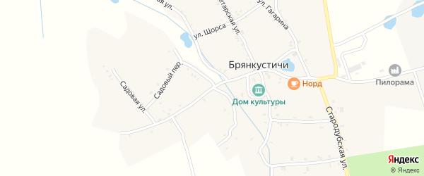 Первомайская улица на карте села Брянкустичи с номерами домов