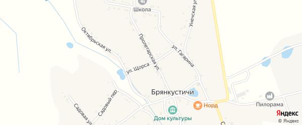 Улица Щорса на карте села Брянкустичи с номерами домов