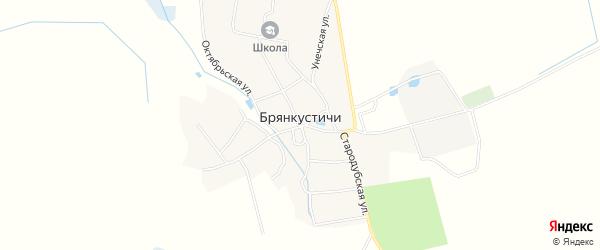 Карта села Брянкустичи в Брянской области с улицами и номерами домов