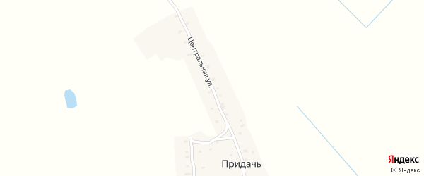 Центральная улица на карте деревни Придачь с номерами домов