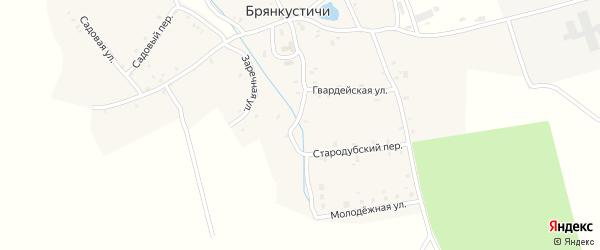 Пионерская улица на карте села Брянкустичи с номерами домов
