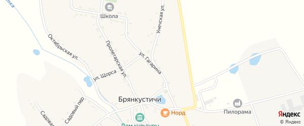 Улица Гагарина на карте села Брянкустичи с номерами домов