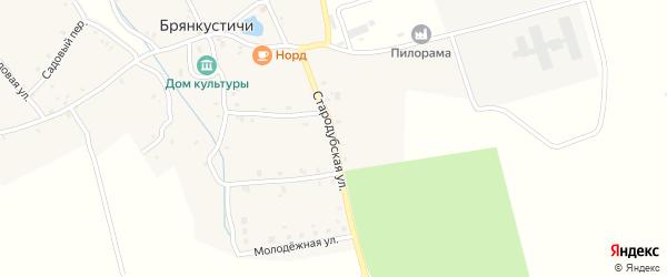 Стародубская улица на карте села Брянкустичи с номерами домов