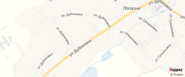 Улица Дубиновка на карте села Лопазны с номерами домов