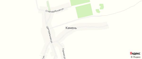 Карта деревни Камня в Брянской области с улицами и номерами домов