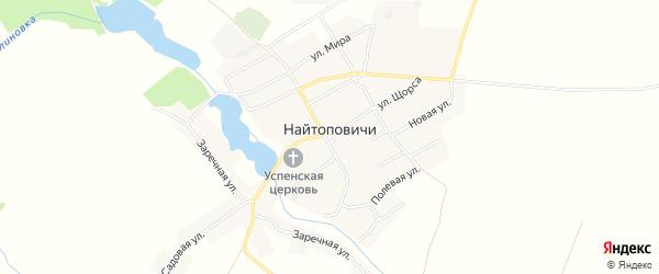Карта села Найтоповичи в Брянской области с улицами и номерами домов