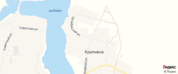 Октябрьская улица на карте деревни Крапивна с номерами домов