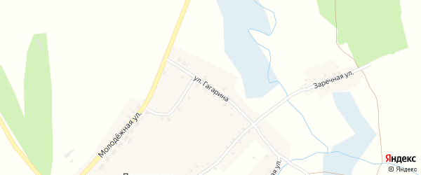 Улица Гагарина на карте села Дегтяревки с номерами домов