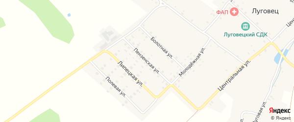 Пензенская улица на карте села Луговца с номерами домов