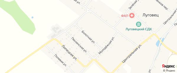 Болотная улица на карте села Луговца с номерами домов