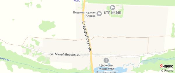 Стародубская улица на карте села Воронка с номерами домов
