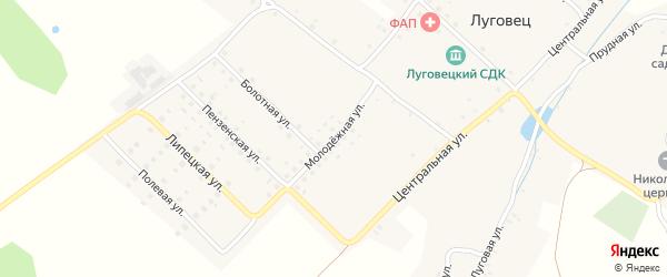 Молодежная улица на карте села Луговца с номерами домов