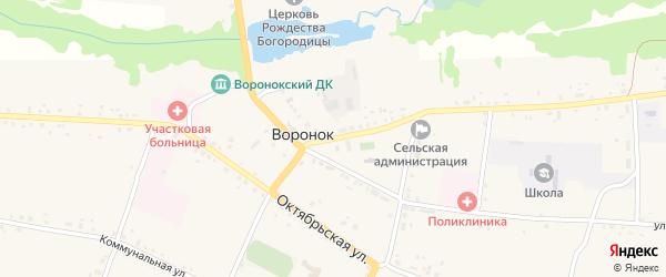 Площадь 1 Мая улица на карте села Воронка с номерами домов