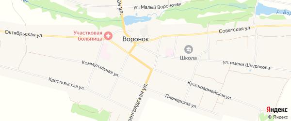 Карта села Воронка в Брянской области с улицами и номерами домов
