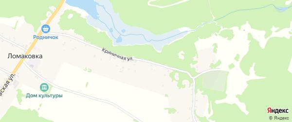 Криничная улица на карте села Ломаковки с номерами домов