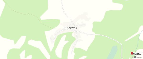 Карта деревни Кокоты в Брянской области с улицами и номерами домов